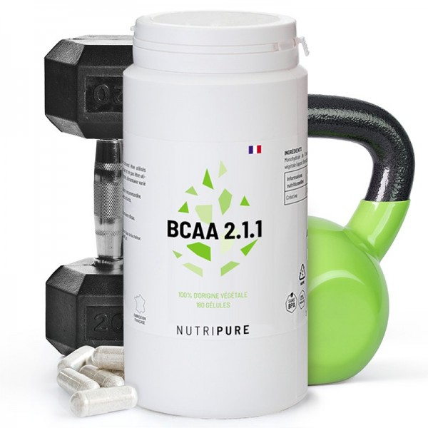 bcaa-211